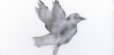 Todenhöfer Krieg IS